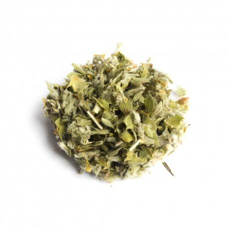L'herbe grecque